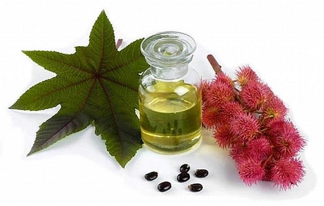 Как лечить волосы касторовым маслом