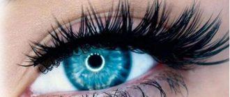 Глаз девушки с верхними ресницами на магнитах