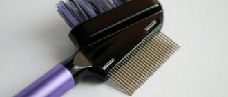 Щеточка – помощник в макияже