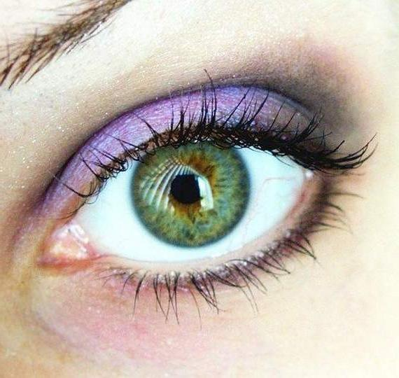 Макияж глаз с использованием сливового и фиолетового оттенков