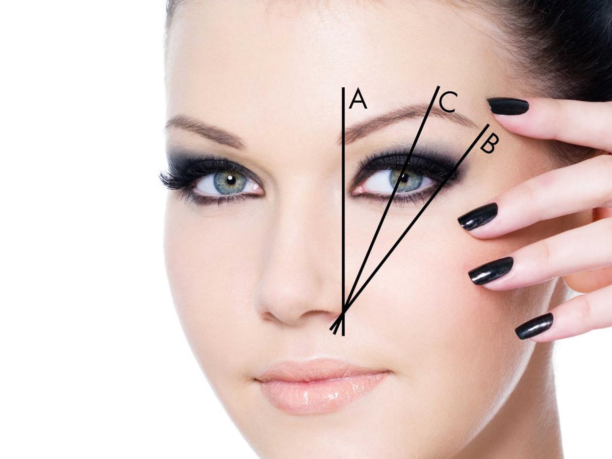 С помощью воображаемых линий можно правильно расставить основные точки бровей