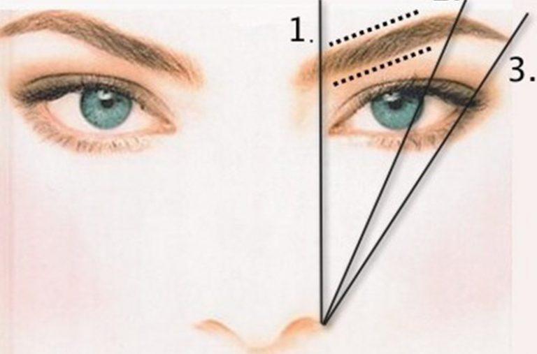 Размер брови определяется с помощью карандаша или ручки, приложенных к крылу носа