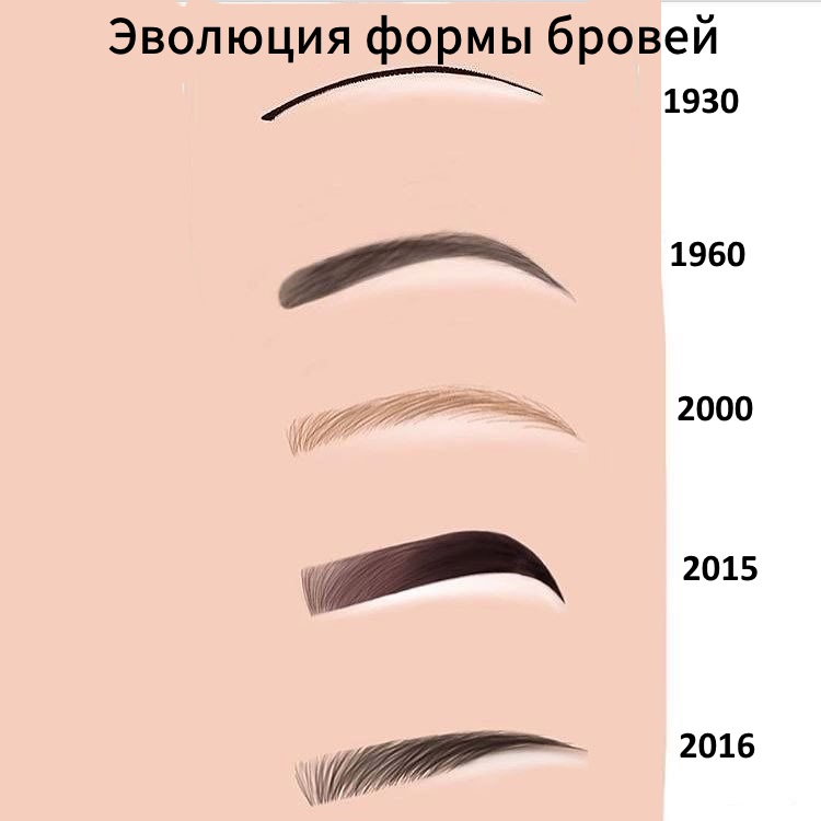 Различия бровей